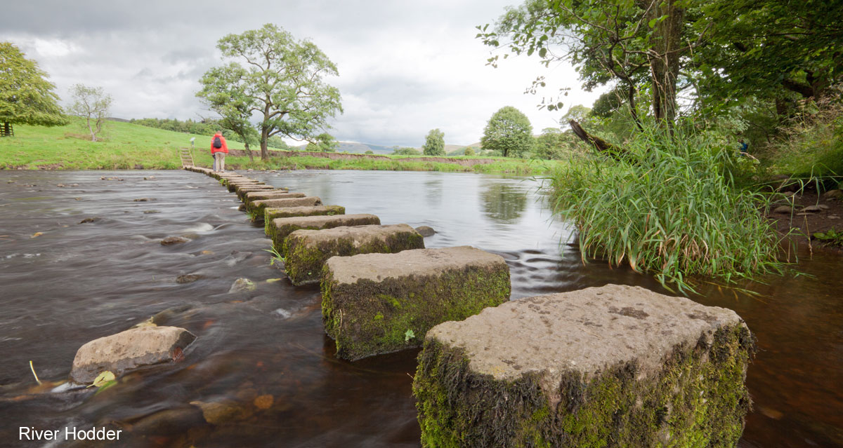 stepping stones acress the Ricer Hodder in the Forest of Bowland