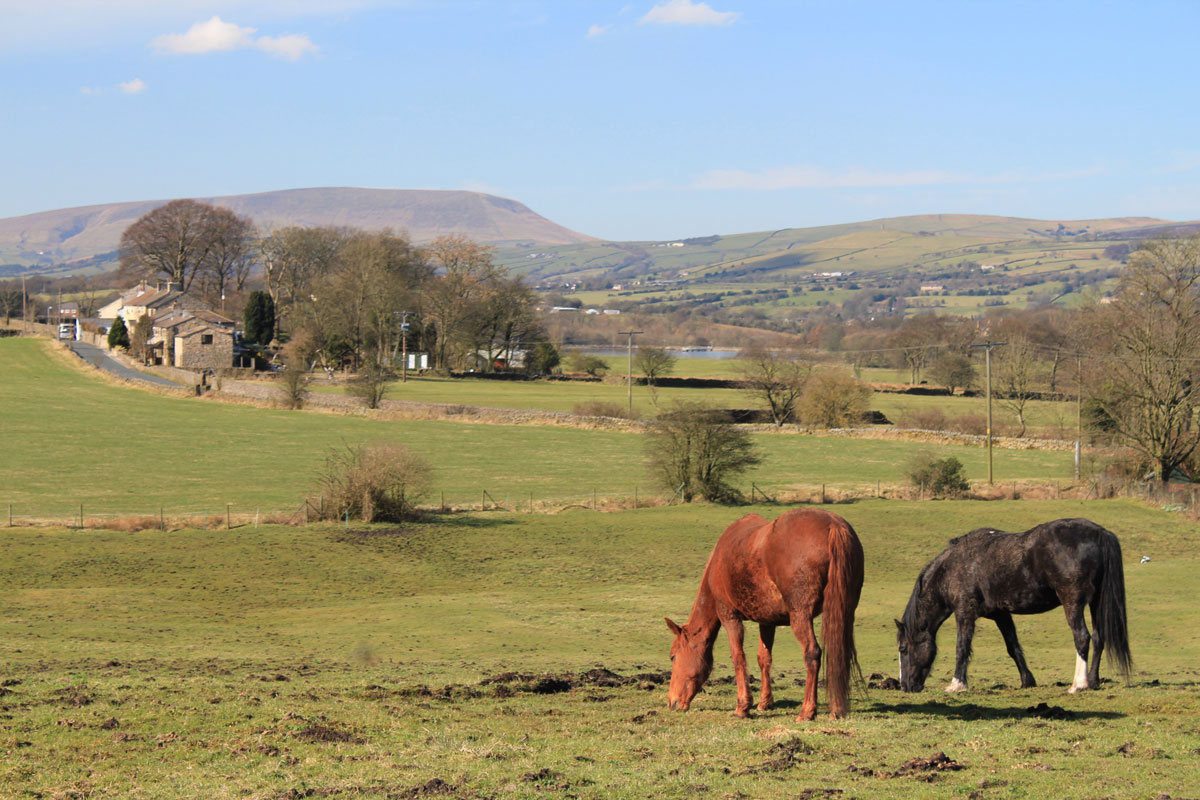 pendle Hill Forest of Bowland