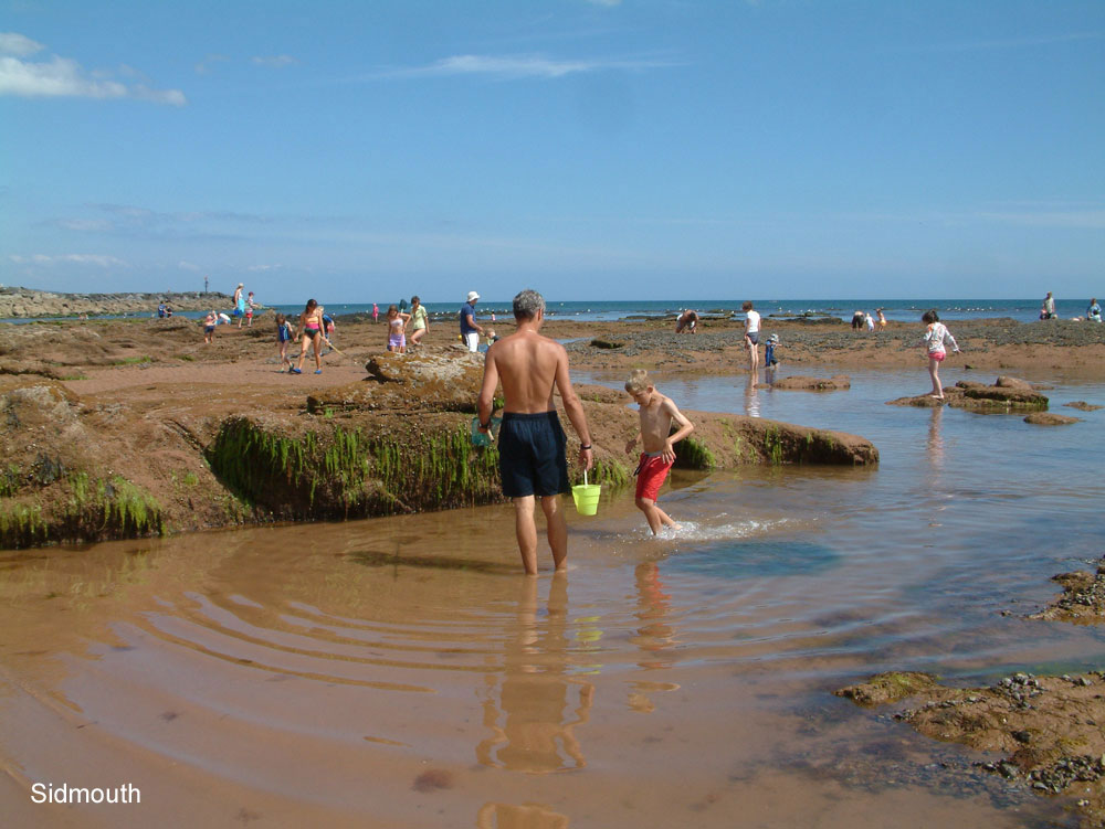 Sidmouth rock pools